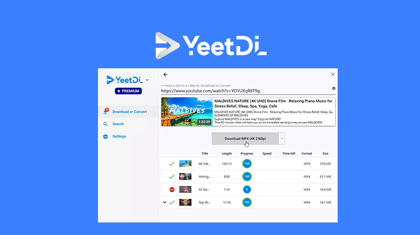 yeetdl lifetime deal